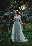 Das Mädchen im transparenten Kleid Lizenzfreie Stockfotos