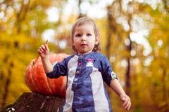 Das Mädchen im Wald mit einem Kürbis Stockfotos