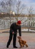 Das Mädchen mit dem Hundpark in der Stadt von Minsk lizenzfreie stockfotos