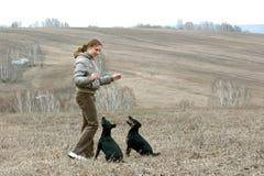 Das Mädchen mit zwei Hunden Stockbild