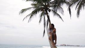 Das Mädchen sitzt auf einer Palme stock footage