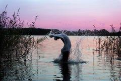 Springen in Wasser Lizenzfreies Stockfoto