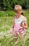 Das Mädchen steht im grünen Gras Stockfotos