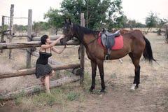 Das Mädchen und das Pferd Stockbilder