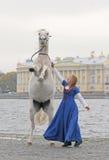 Das Mädchen und das Pferd auf Kai Lizenzfreie Stockfotos