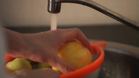 Das Mädchen wäscht einen Pfirsich unter einem Wasserstrom stock footage