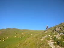 Das Mädchen wandern, welches die Ansicht über eine grüne Wiese zurück schaut genießt stockfoto