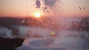 Das Mädchen wirft den Schnee von den Palmen auf dem Sonnenunterganghintergrund stock video footage