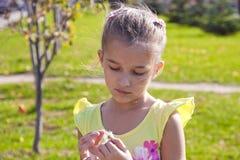 Das Mädchen wundert sich auf Kamille im Park Lizenzfreie Stockfotografie