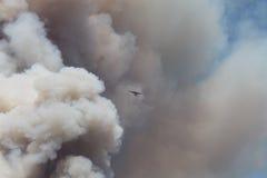 Das Maschinenhaus-Feuer | 2013 | Fläche u. enorme Feder O Stockbild