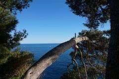 Das Mediteranian Lizenzfreie Stockbilder