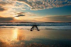 In das Meer Stockfotografie