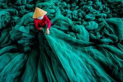 Das Meer des Grüns lizenzfreies stockfoto