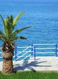 Das Meer und eine Palme - Erholungsort lizenzfreies stockfoto