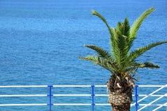 Das Meer und eine Palme - Erholungsort lizenzfreie stockfotos