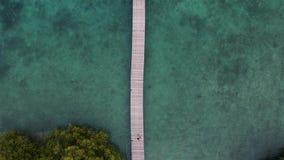 Das Menjangan, Bali gesehen von oben genanntem mit einer Brummenkamera stock video