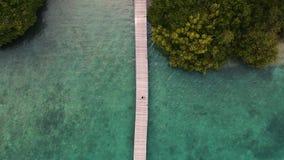 Das Menjangan, Bali gesehen von oben genanntem mit einer Brummenkamera stock footage