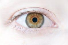 Das menschliche Auge Stockfotografie