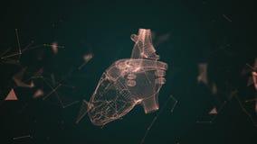 Das menschliche Herz wird gebildet, indem man Partikel spinnt vektor abbildung