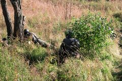 Das Militär im Wald stockbilder