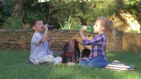 Das Mittagessen im Schulhof, Kinder trinken zusammen Saft von den Flaschen, die nahe Rucksäcken und Büchern auf Rasen sitzen stock video