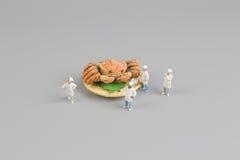 das Modell der Chefzahl von Hokkaido-Krabbe Stockbilder