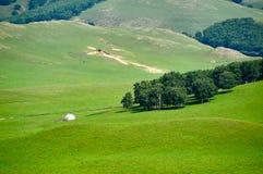 Das mongolische yurt auf der Steppe Lizenzfreie Stockfotografie