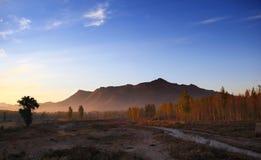 Das Morgenlicht Stockfotos