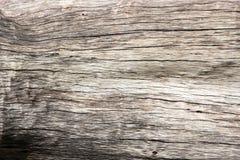 Das Muster des Holzes fällte aufgegliedertes Tonsaibanyan lizenzfreies stockfoto