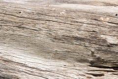 Das Muster des Holzes fällte aufgegliedertes Tonsaibanyan stockfoto