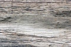 Das Muster des Holzes fällte aufgegliedertes Tonsaibanyan stockfotografie