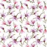 Das nahtlose Muster, das von der rosa Magnolie gemacht wird, blüht auf einer Niederlassung auf weißem Hintergrund Adobe Photoshop Stockbilder
