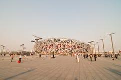 Das nationale Stadion des Porzellans Lizenzfreies Stockbild