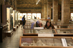 Das Naturgeschichte-Museum Stockbild