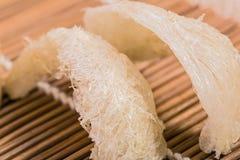 Das Nest des Bambusvogels auf Stockfotografie
