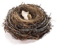 Das Nest des Stacheldrahtvogels Stockbilder