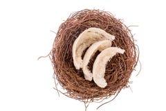 Das Nest des Vogels auf dem Nest Stockfotos