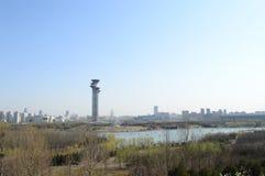 Das Nest des Vogels in Peking Lizenzfreie Stockbilder