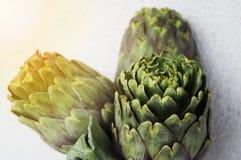 Das neue grüne geschmackvolle gekochte artichok bereitete sich für das Kochen, horizont vor lizenzfreies stockbild