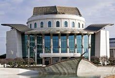 Das neue nationale Theater Lizenzfreies Stockbild