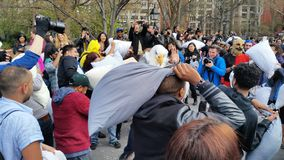 Das 2016 NYC-Kissenschlacht-Tagesteil 2 68 Stockfoto