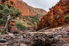 Das Ormiston-Schlucht waterhole, West-MacDonnell-Strecken-Nationalpark, Nordterritorium, Australien lizenzfreie stockfotografie