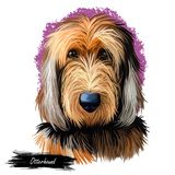 Das Otterhoundhaustier, das langen Pelz hat, lokalisierte digitale Kunst des Aquarellporträts Canis Lupus familiaris Haustier, do stock abbildung