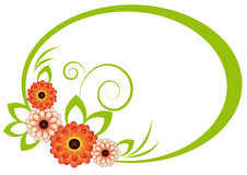 Das ovale Feld mit Chrysantheme Lizenzfreies Stockfoto