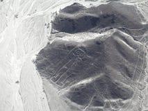 "Das ""the Owlman alias Astronautâ€-, Nazca zeichnet Stockfotos"