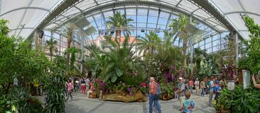 Das Palmenhaus auf Mainau-Insel lizenzfreie stockfotografie