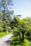 Das Parkarboretum lizenzfreie stockbilder