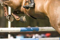 Das Pferd 012 springend Stockfoto