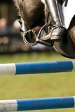 Das Pferd 024 springend Lizenzfreie Stockbilder