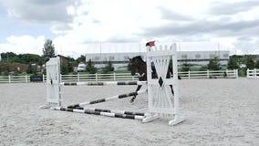 Das Pferd ist anhaftet die Sperre während des Sprunges stock video footage